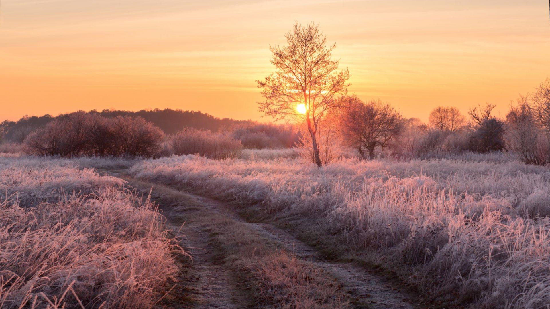Студени утрини, без съществени валежи до края на месеца