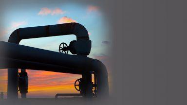 Как ще се отразят изборите в САЩ на американските енергийни проекти у нас?