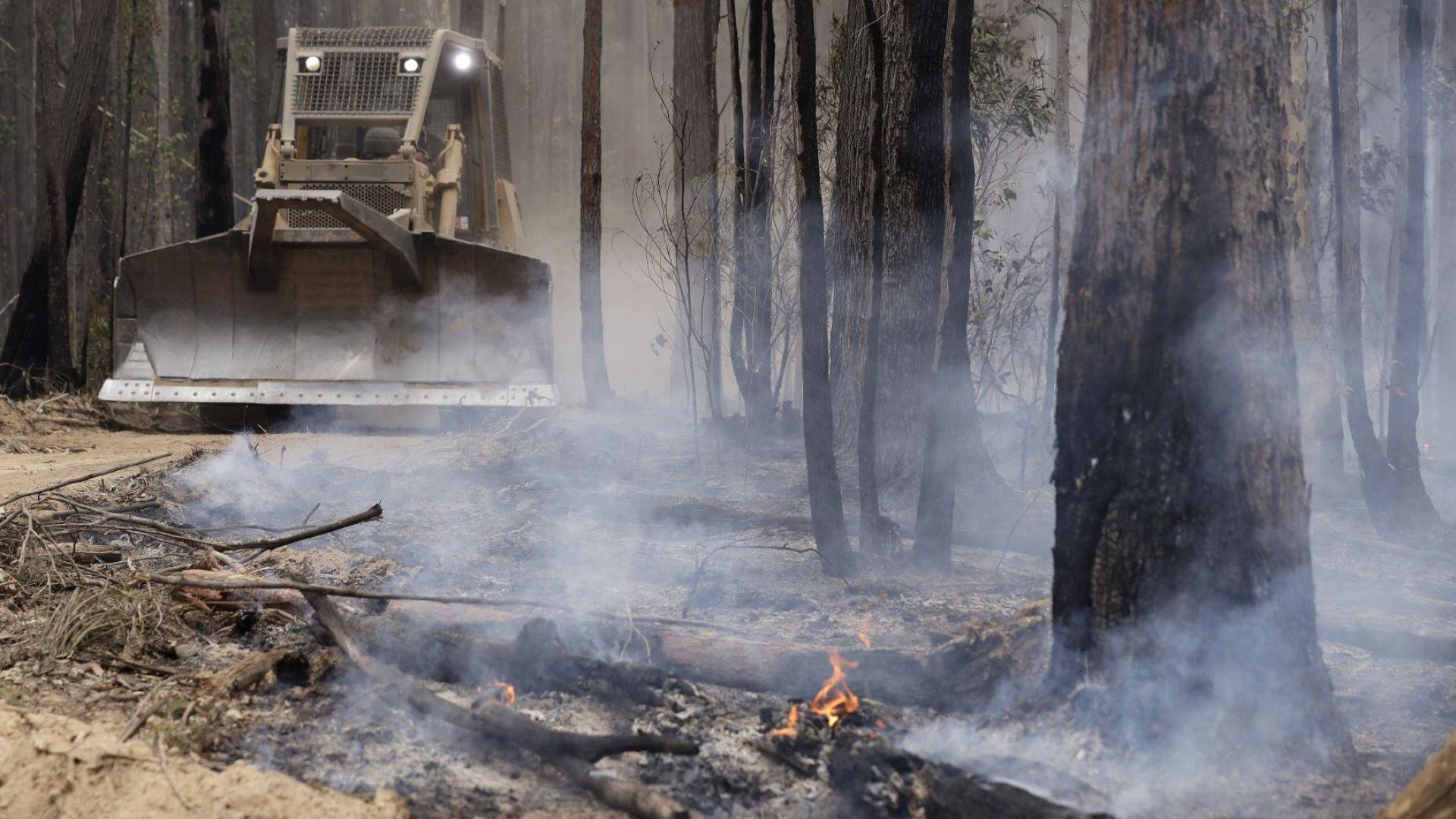 Преките загуби от пожарите в Австралия могат да достигнат 3,5 милиарда долара