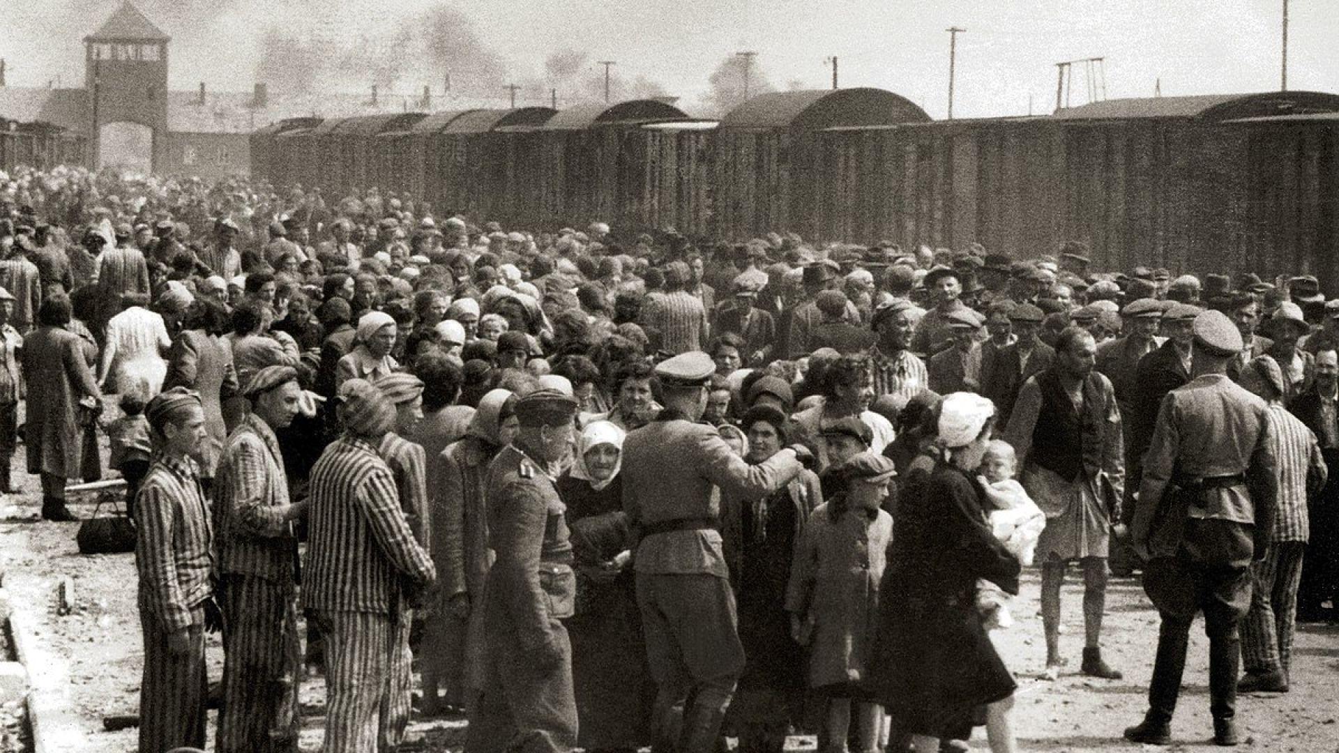 Руското министерство на отбраната обвини днес полската съпротива срещу нацистите,