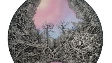 Обсебена от дървесните корени