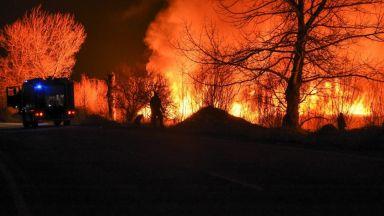 Голям пожар горя край Драгоманското блато (снимки, видео)
