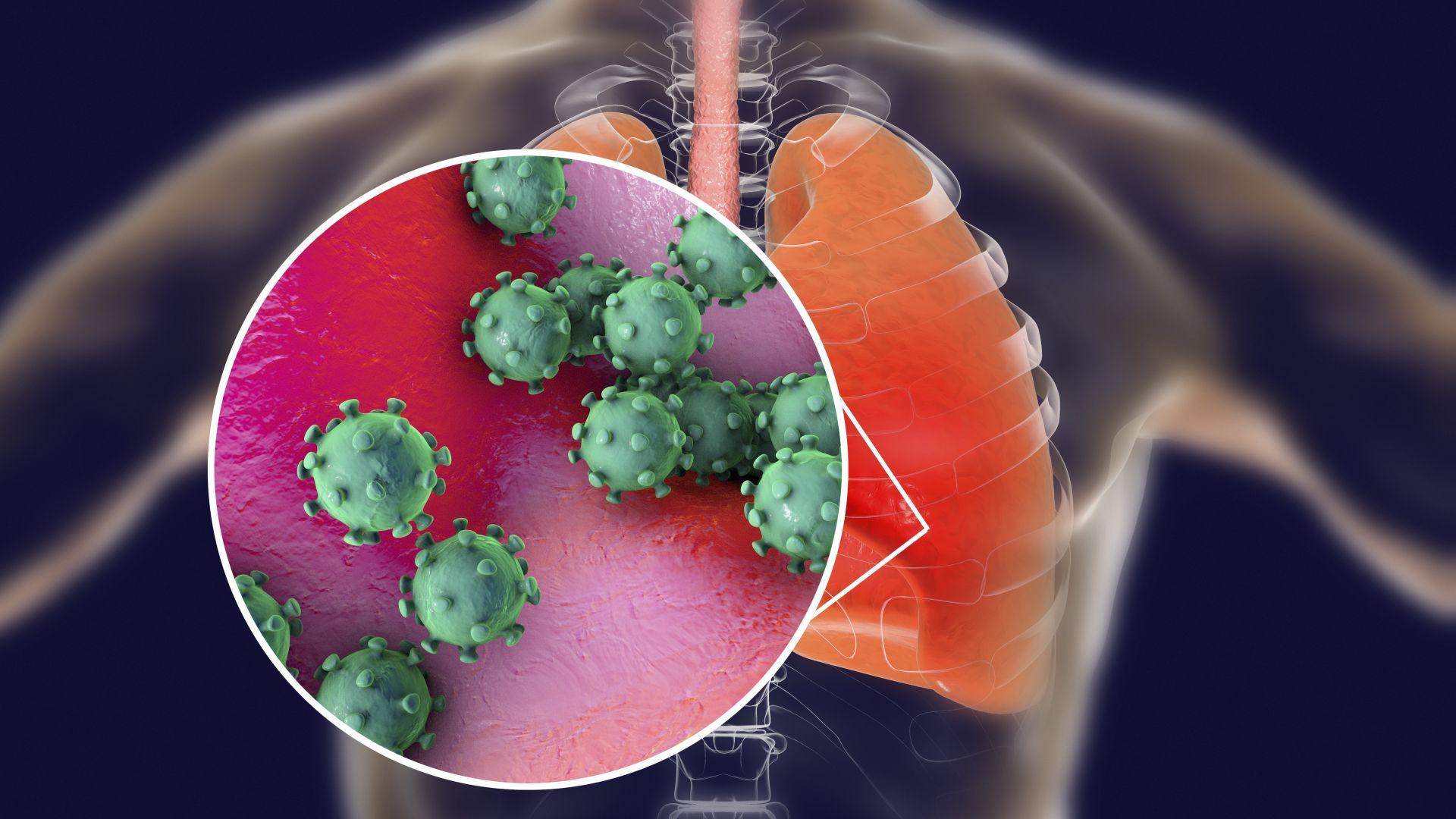 Термокамери на летището в София следят за новия опасен коронавирус