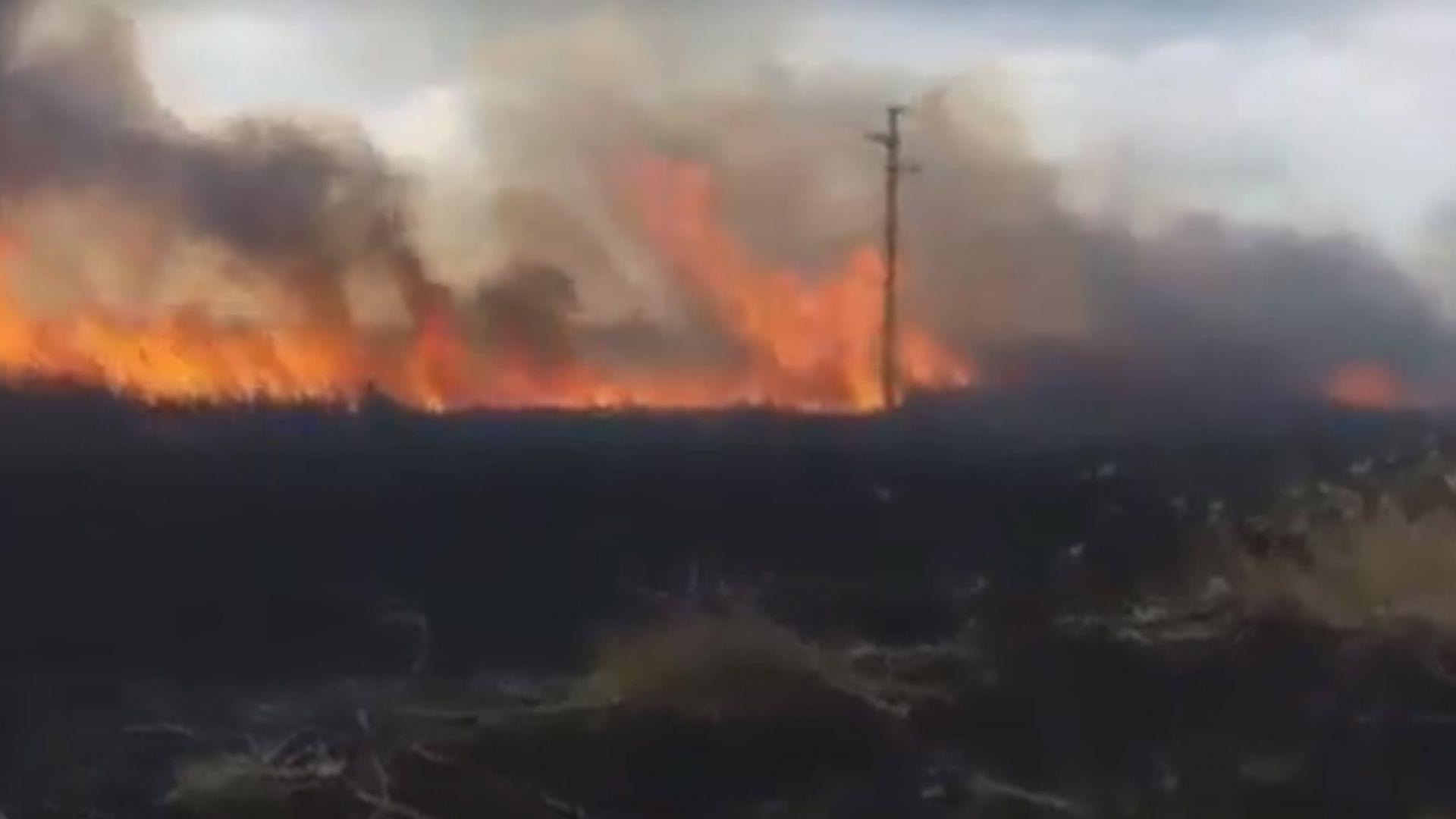 Овладян е пожарът в Орловото блато