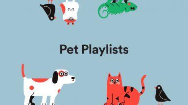 В Spotify се появиха плейлисти за животни
