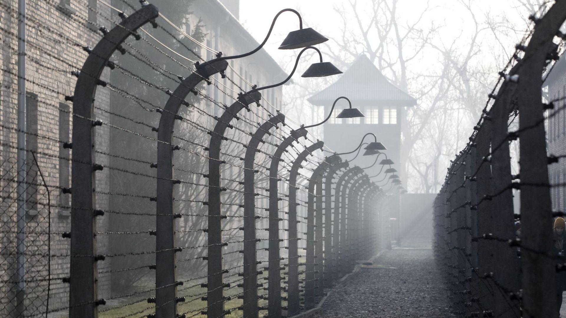 Оцеляла се върна в Аушвиц: Менгеле не ме уби, защото искаше мен и близначката ми за опитни зайчета