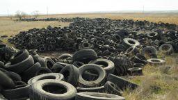 Орнитолози откриха огромно незаконно сметище за гуми (снимки)