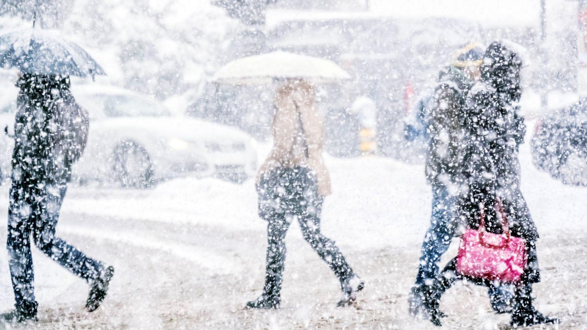 Сняг, дъжд и силен вятър, жълт код за цялата страна