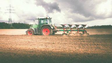 Селскостопанското ни производство надхвърли 8.5 млрд. лева