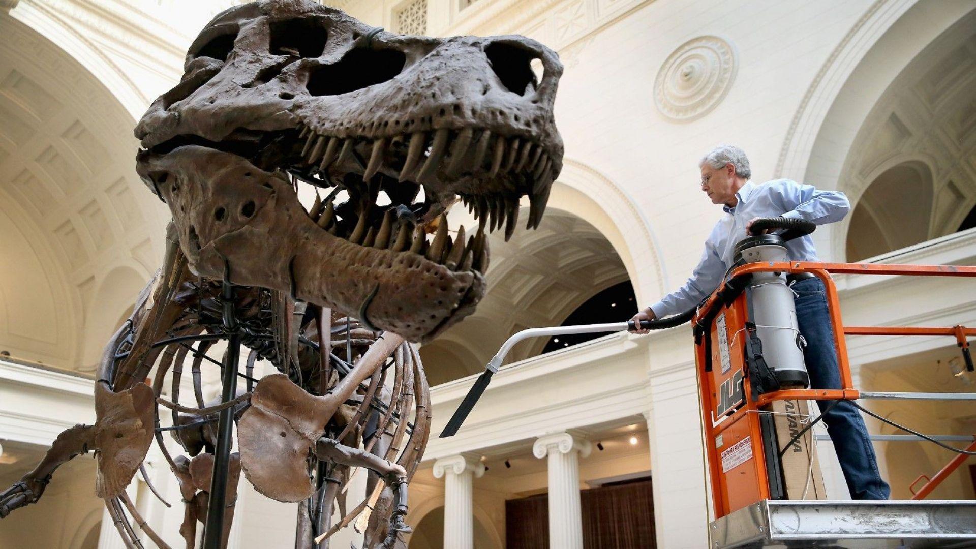"""Канадски учени откриха нов вид тиранозавър и го нарекоха """"Жътваря на смъртта"""""""