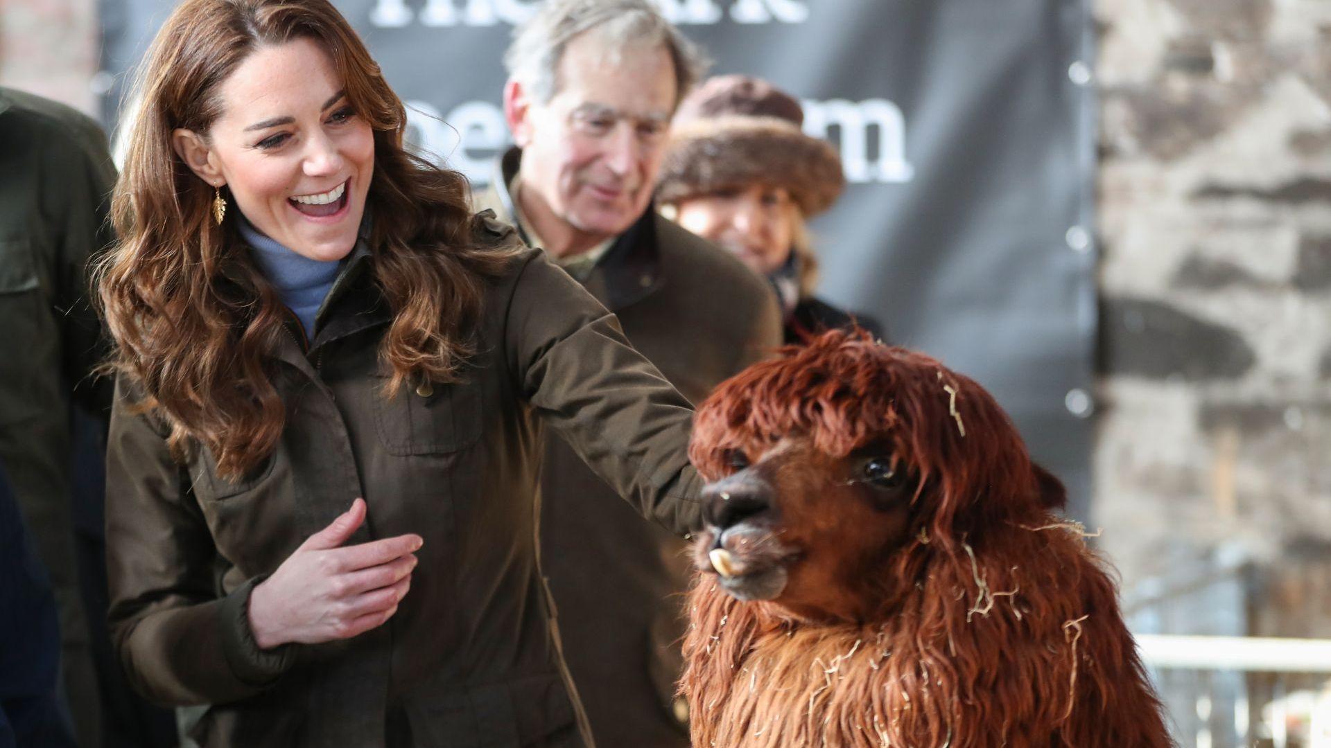 Кейт на първо самостоятелно посещение в Северна Ирландия