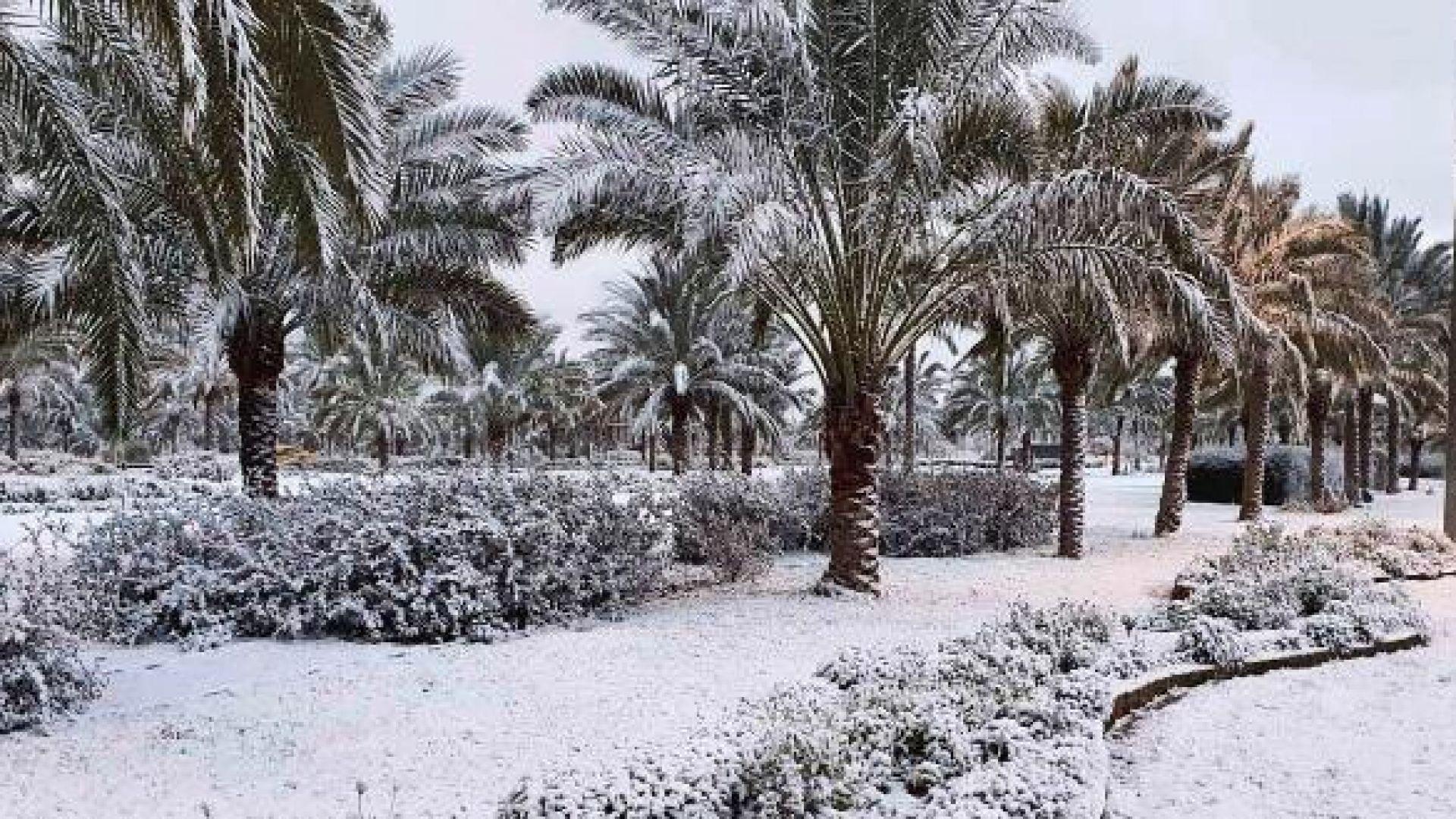 Сняг валя в Багдад за втори път за 100 години