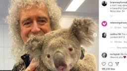 Брайън Мей свири за коала, оцеляла при пожарите в Австралия (видео)