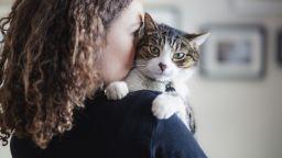 Да научим котката да стои сама, преди да се върнем на работа