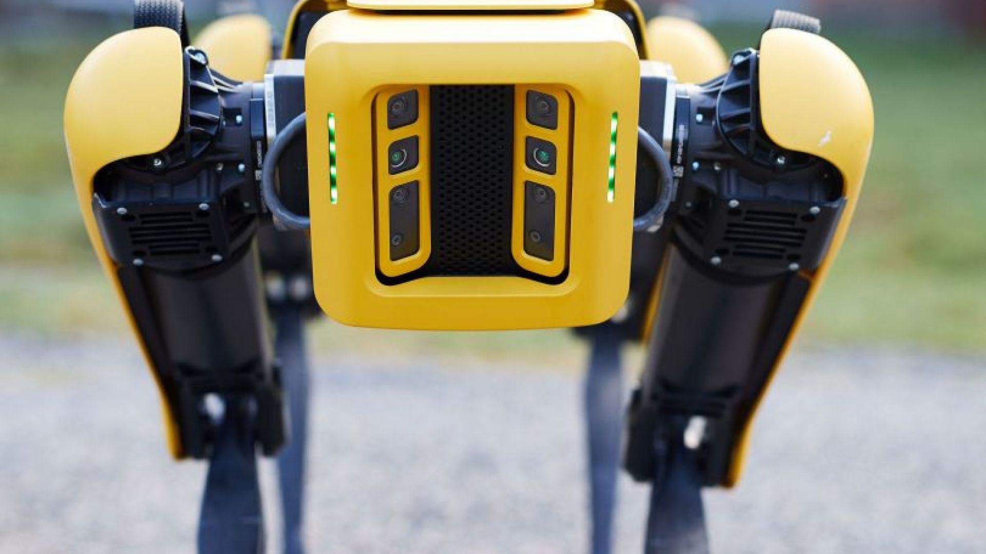 Кучета роботи следят за спазването на дистанция в сингапурски паркове