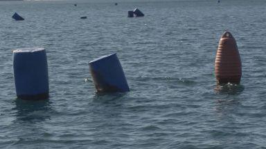 Изоставени мидени ферми замърсяват морето край Приморско