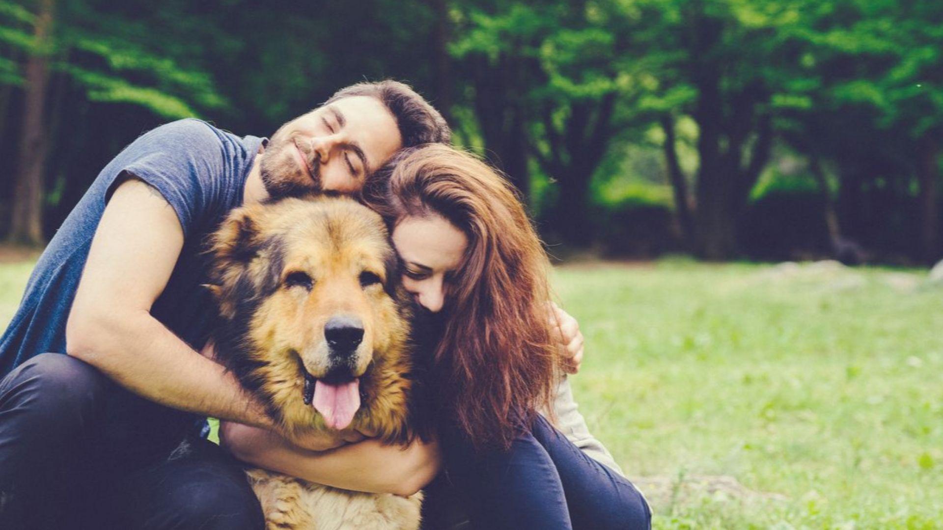Двойките, които заедно отглеждат куче, са по-щастливи