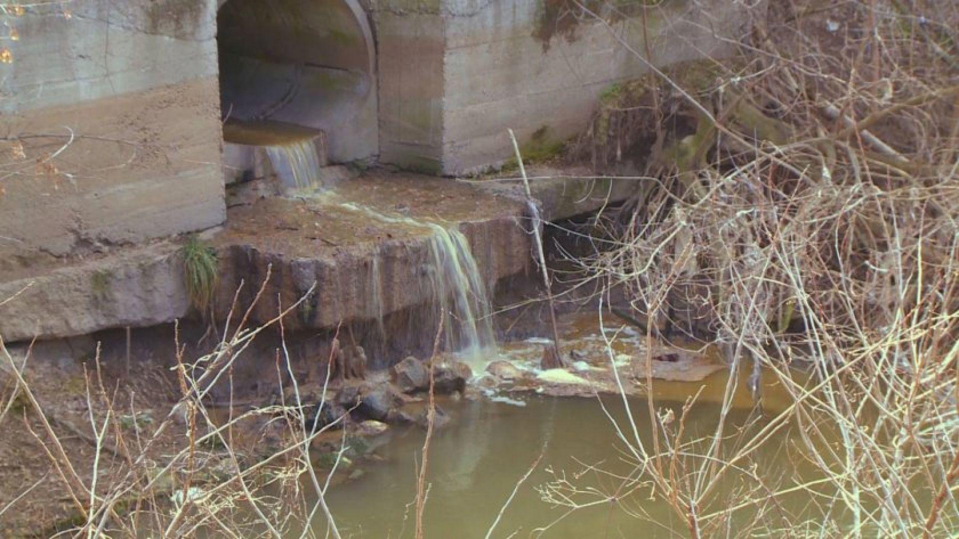 Русенска фирма замърсява водите на река Русенски Лом, която се
