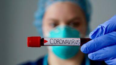 Коронавирусът е най-активен при температура от около 4 градуса по Целзий