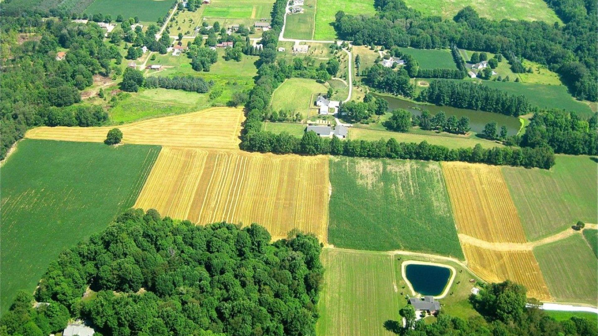 Българското селско стопанство бе тежко ударено от кризата с коронавируса.