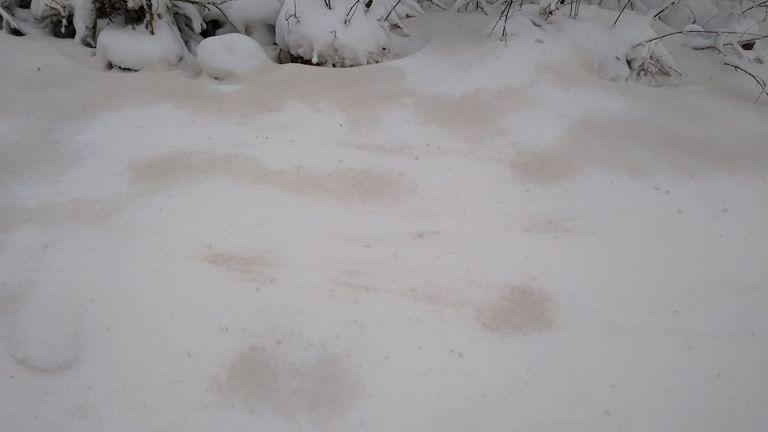 Мръсен сняг покри Северна България