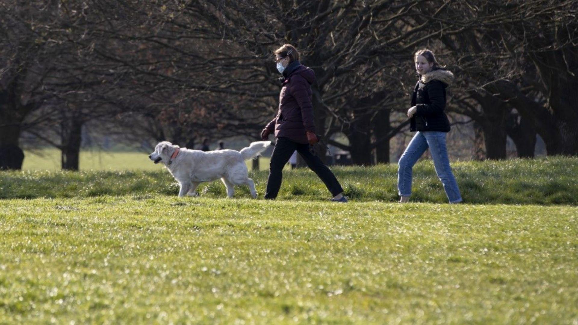 23 акта за нарушение на забраната за преминаване през паркове