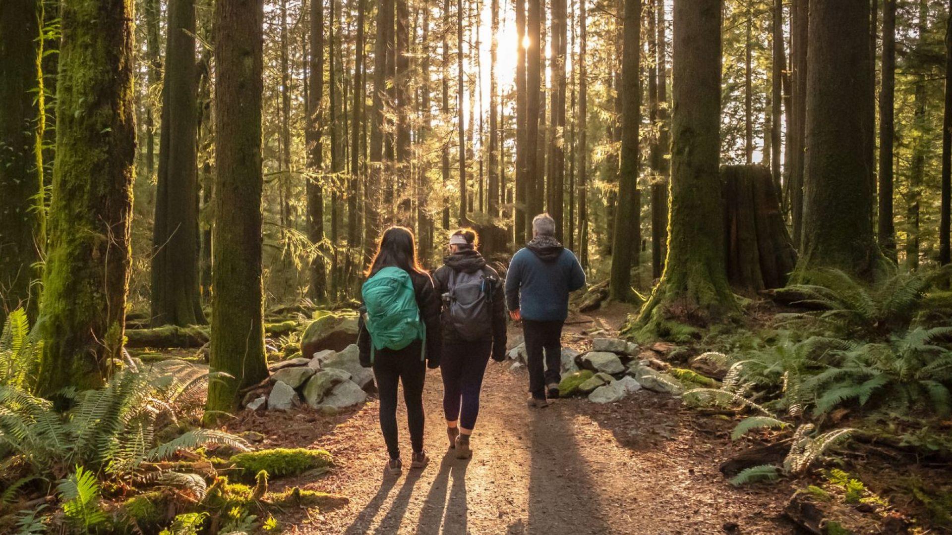 Продължителното ходене понижава кръвното налягане