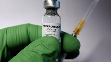 Шест са най-успешни кандидати за ваксина по списъка на СЗО