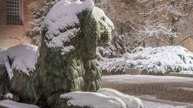 Априлски сняг затрупа София в полунощ (снимки)