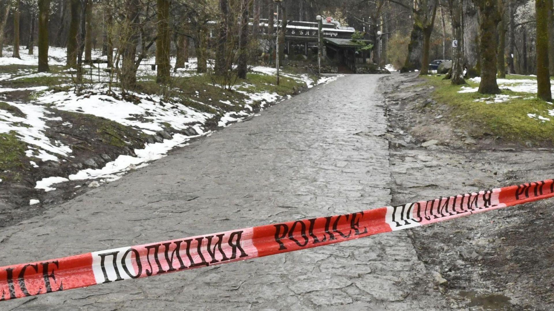 Полицейски патрули пазят Витоша. Пътеките пустеят (снимки)