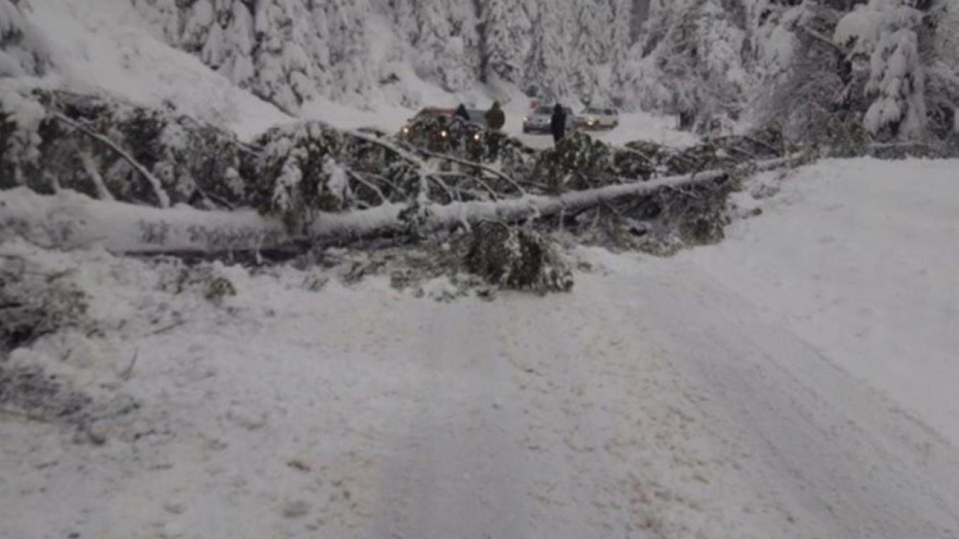 Община Рудозем е в бедствено положение от 17 часа. Причината