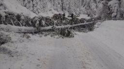 Обявиха бедствено положение в част от Родопите след 80 см сняг (снимки)