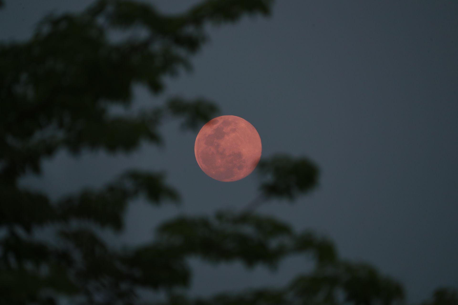 Супер розова Луна в Русия