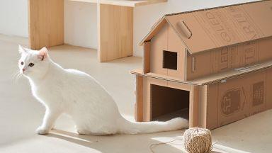Samsung пуска телевизори в кашони, които лесно се превръщат в къщички за котки