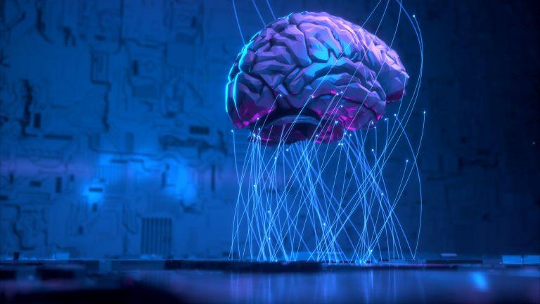 Мозъчни увреждания, типични за пациенти с болестите на Алцхаймер и
