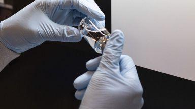 Писател и еротичен модел сред авторите на изследването за хидроксихлорохина, взето за чиста монета от СЗО