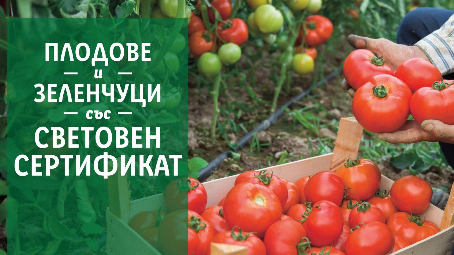 В подкрепа на родното производство LIDL предлага 100 % български розови домати и био краставици в цялата верига магазини