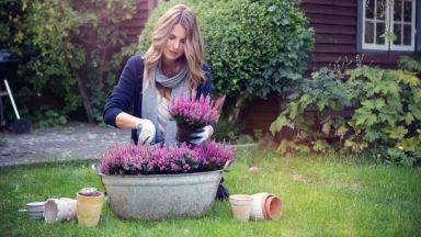Градинарството влияе добре на нашето физическо и психично здраве