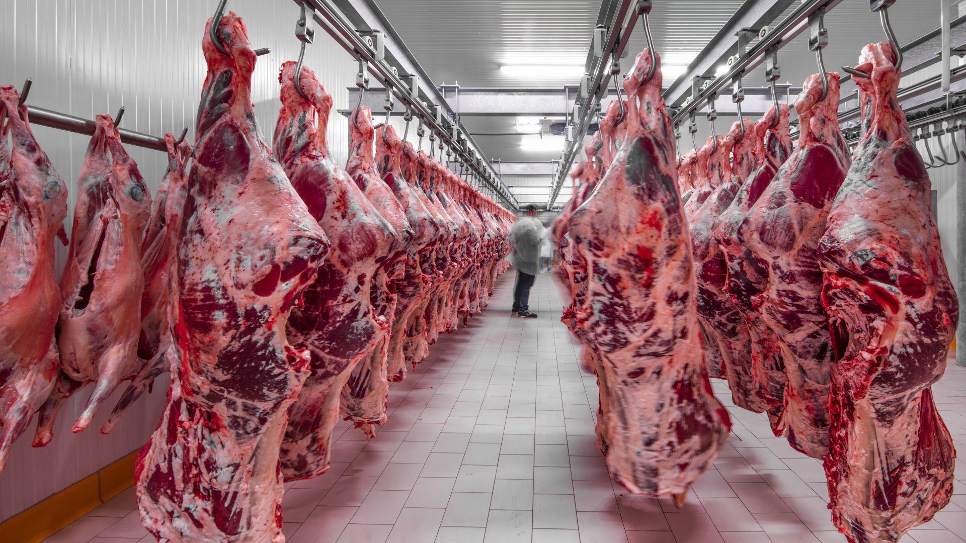 Новината е повече от тревожна. 129 от служителите в месопреработвателен