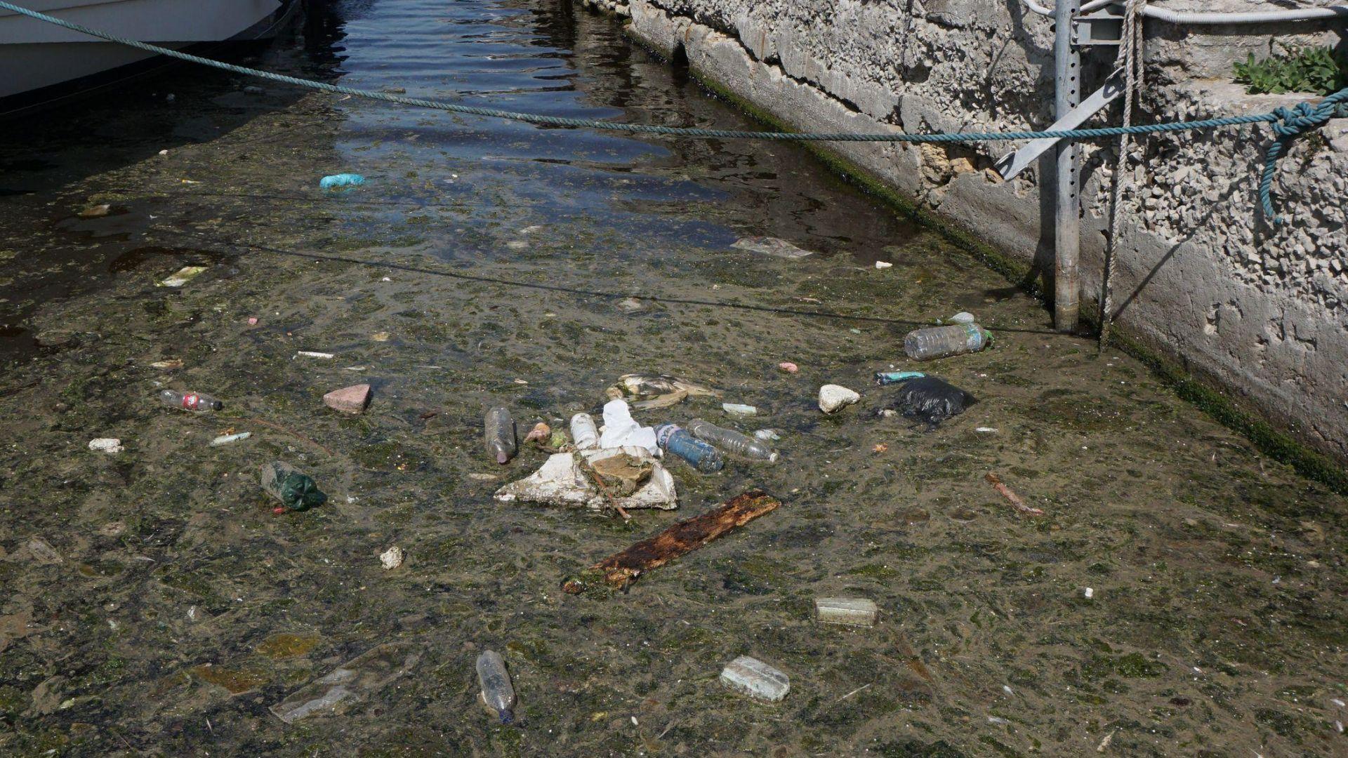 Варненското езеро е замърсено с органични вещества