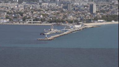 Бедствие във Варненския залив - морето черно, рибата мъртва (видео)
