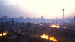 НАСА създаде сателитна система, насочена към забавяне на обезлесяването