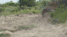 Багер разора дюни на плажа в Ахтопол