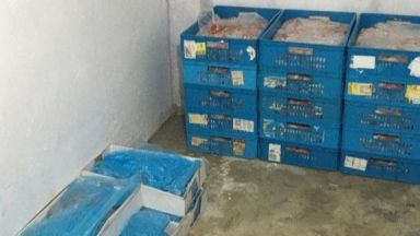 """Фискален контрол"" предотврати ДДС измама с над 20 тона месо"