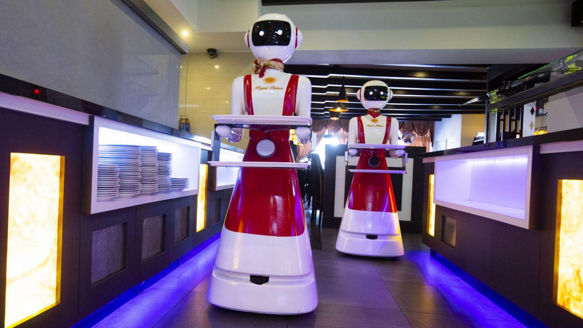 Роботи заместват сервитьори в ресторант в Нидерландия