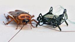 Екип от Харвард направи робот-хлебарка