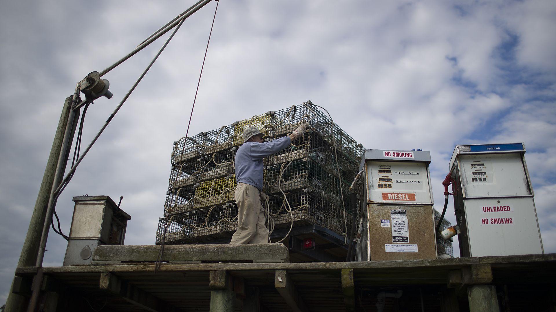 САЩ заплаши да обложи вноса от ЕС и Китай заради митата върху омарите