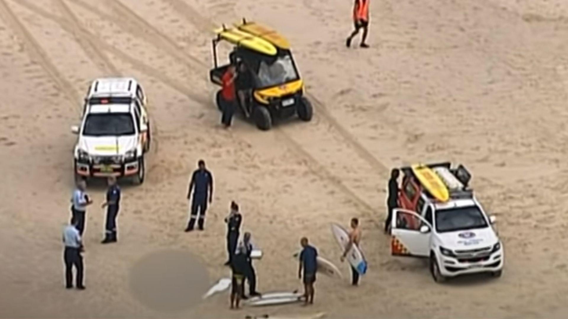 Триметрова акула атакува и уби 60-годишен сърфист в Австралия, предаде