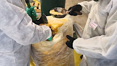 Откриха 3 тона кокаин в контейнери със замразена пулпа от ананас в Полша (снимки)