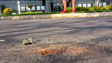 Противоградна ракета падна пред стадиона в Харманли (снимки)